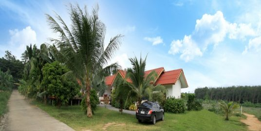 A vendre resort Bang Kao Koh Samui piscine
