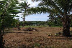 A vendre terrain Chalok Baan Kao Koh Phangan