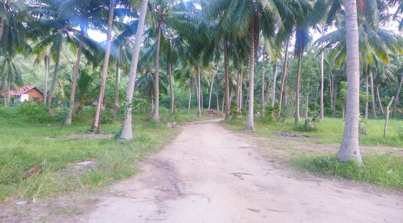 A vendre terrain Koh Phangan Thong Nai Pan (3)_resize
