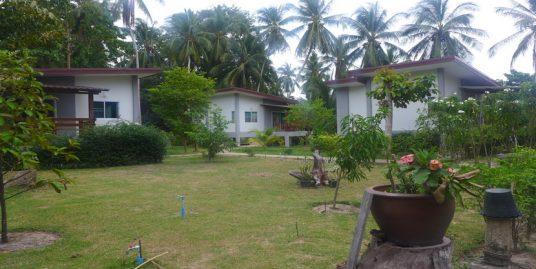 A vendre terrain Maduawan Koh Phangan 2 rai avec 5 maisons
