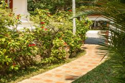 Location villa voyage de noces Koh Samui (6)_resize