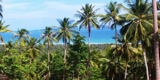 Terrains à vendre Ban Tai Koh Phangan vue mer 664-1.356m²