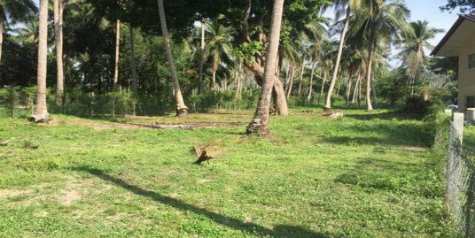 Vente terrain Koh Phangan Wok Tum 736 m² plat cocoteraie