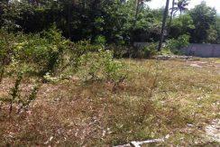 A vendre terrain Namuang Koh Samui plot 500 m²_resize