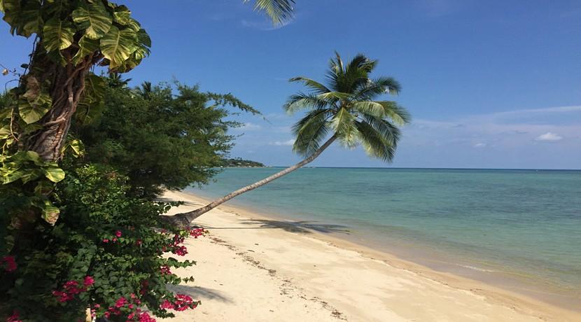 Resort Lamai Koh Samui à vendre 0028