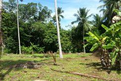 A vendre terrain Koh Samui Lipa Noi