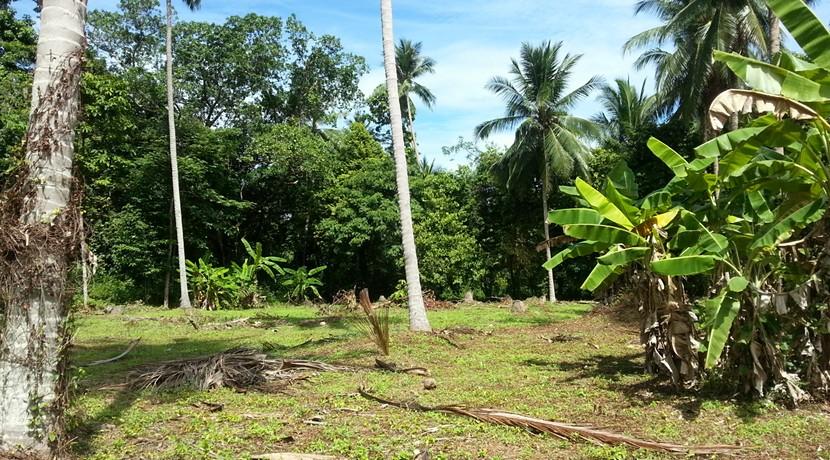 A vendre terrain Koh Samui Lipa Noi 0001