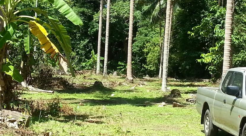 A vendre terrain Koh Samui Lipa Noi 0004