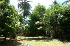 A vendre terrain Koh Samui Lipa Noi 0005