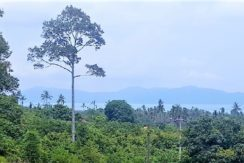 A vendre terrain vue mer constructible Bophut Koh Samui