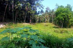 A vendre terrains Lamai Koh Samui