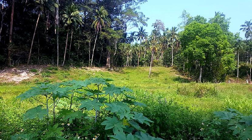 A vendre terrains Lamai Koh Samui – 697m² < 1604 m²