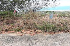 A vendre terrain Koh Samui Bang Makham 0006