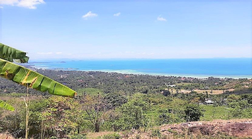 A vendre terrain Koh Samui Bang Makham 0013