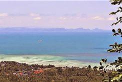 A vendre terrain Koh Samui Bang Makham 0015