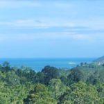 A vendre terrain Taling Ngam Koh Samui