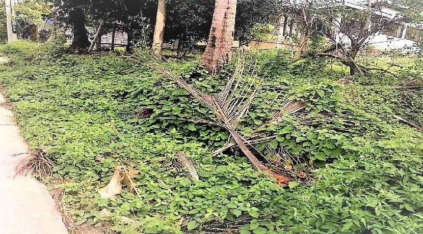 Terrain à vendre Lamai Koh Samui 0003