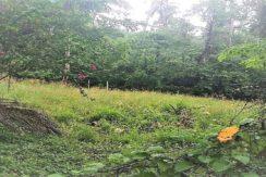 Terrain à vendre Lamai Koh Samui 0004