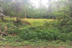 Terrain à vendre Lamai Koh Samui 0006