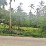 Terrain à vendre Lamai Koh Samui