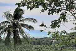 Terrain vue mer Maenam à Koh Samui