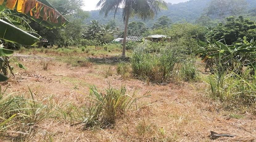A vendre terrain à Lamai Koh Samui – 10.400 m² – plat – Chanote