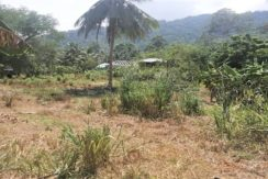 A vendre terrain à Lamai Koh Samui 03