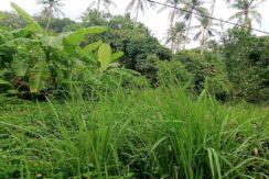 A vendre terrain plat Lamai Koh Samui 02