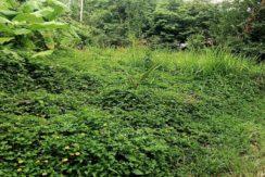 A vendre terrain plat Lamai Koh Samui 04