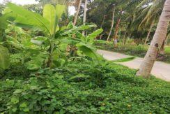 A vendre terrain plat Lamai Koh Samui 07