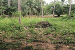 A vendre terrains Lamai centre à Koh Samui