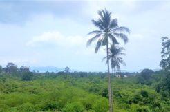 Terrain Bophut vue mer à vendre Koh Samui