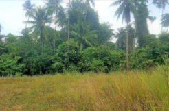A vendre terrain à Bang Kao Koh Samui