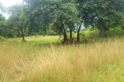 A vendre terrain à Bang Kao - Laem Sor Koh Samui