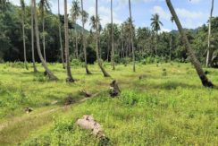 For sale land Maenam Soi 1 in Koh Samui