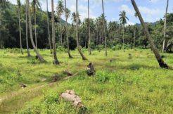 A vendre terrain Maenam Soi 1 à Koh Samui