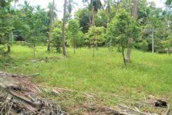 A vendre terrain à Ban Tai Koh Samui 02