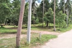 A vendre terrain à Ban Tai Koh Samui 03