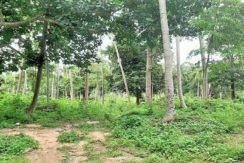 A vendre terrain au centre de Chaweng à Koh Samui 02