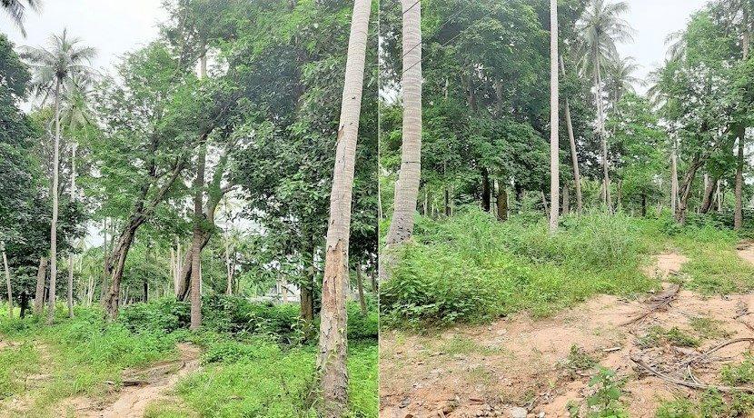 A vendre terrain au centre de Chaweng à Koh Samui 03