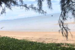 A vendre terrain bord de mer Bang Por à Koh Samui 012