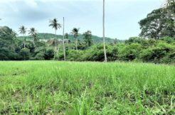 A vendre terrain plat Bophut à Koh Samui