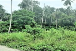 A vendre terrain plat au Soi 1 à Maenam Koh Samui
