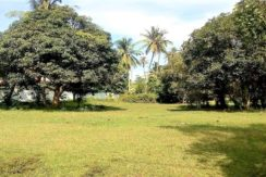 A vendre terrain plat à Ban Tai Koh Samui