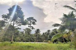 A vendre terrain plat à Taling Ngam Koh Samui