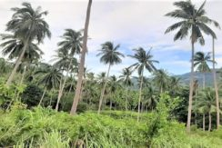 A vendre terrain au Soi 1 à Maenam Koh Samui