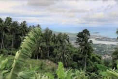 A vendre terrain vue mer Chaweng Hill Koh Samui 012