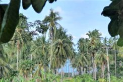 A vendre terrain vue mer à Chaweng Noi à Koh Samui