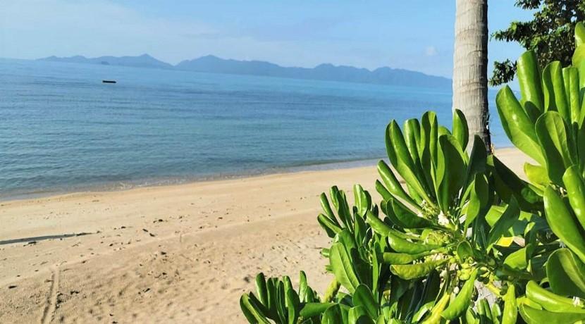Terrain bord de mer à vendre Bang Por à Koh Samui – 3.200 m² – Chanote
