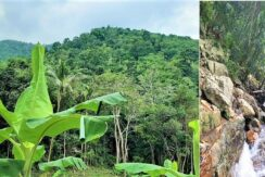 A vendre terrain avec cascade à Maenam Koh Samui